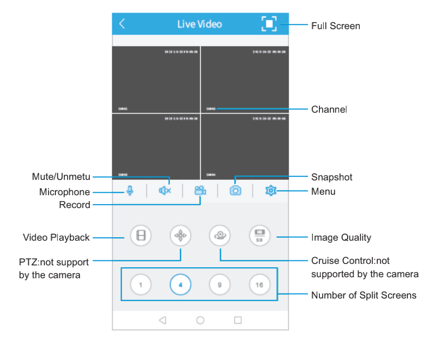 Function Overview of the Live Video
